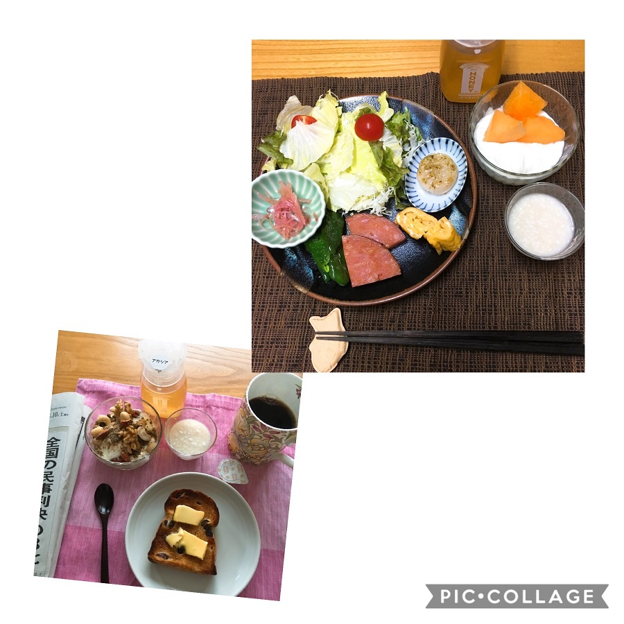 f:id:shibataku3:20190810085127j:plain