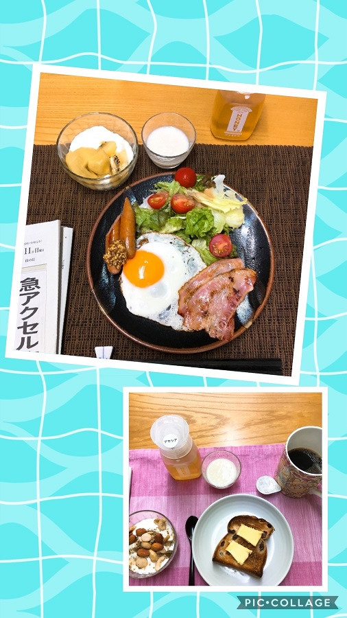 f:id:shibataku3:20190811073346j:plain