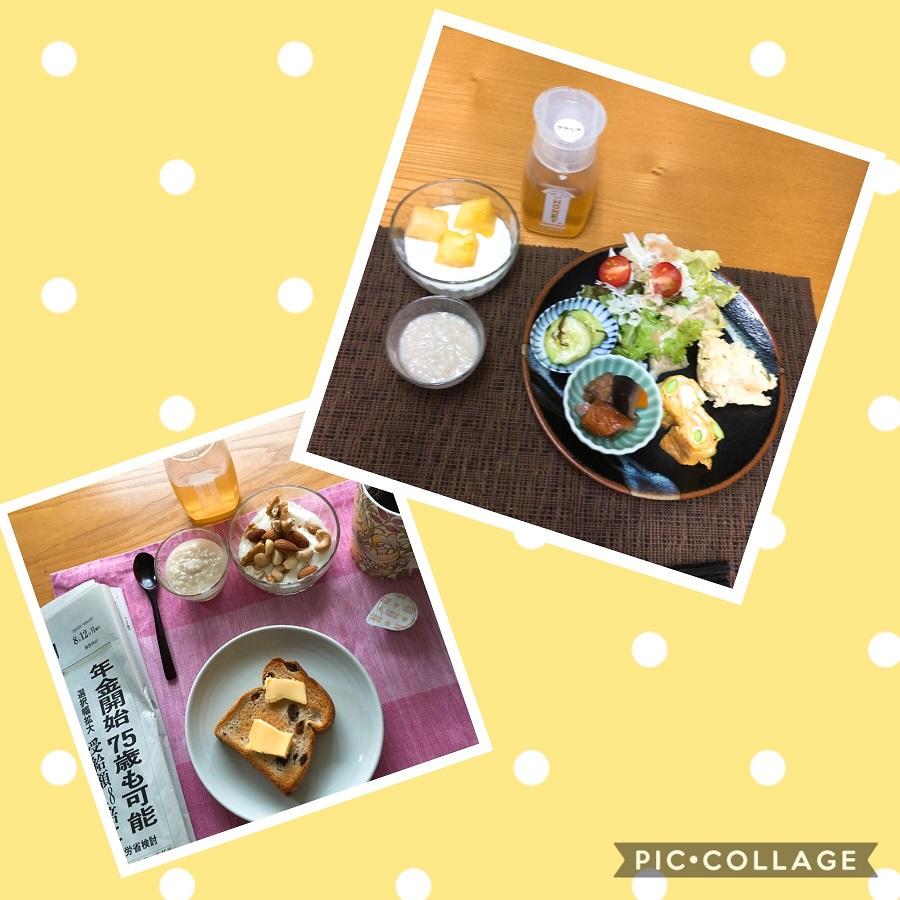 f:id:shibataku3:20190812082737j:plain