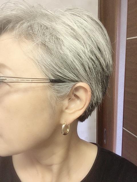 f:id:shibataku3:20190812084545j:plain