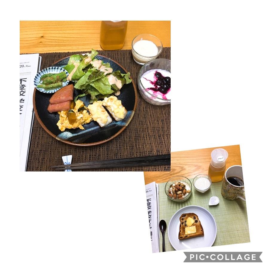 f:id:shibataku3:20190820083355j:plain