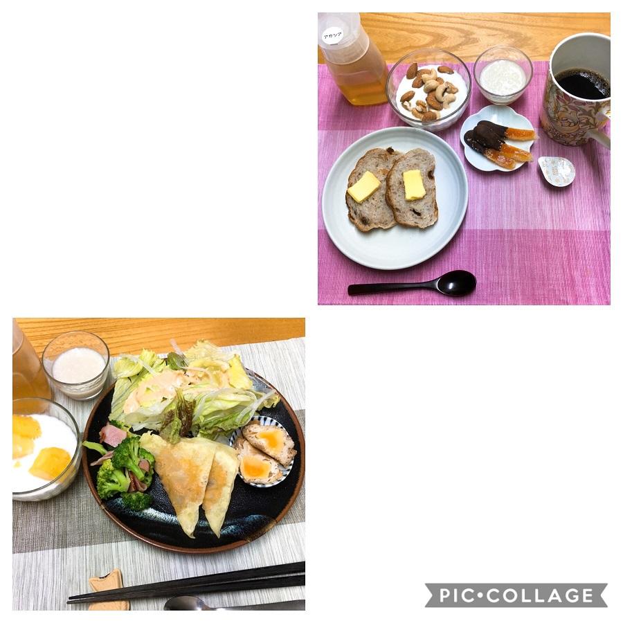 f:id:shibataku3:20190823082917j:plain