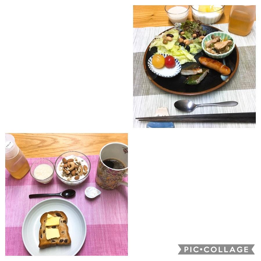 f:id:shibataku3:20190824090842j:plain