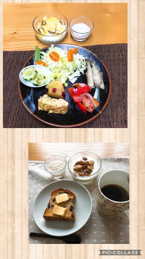 f:id:shibataku3:20190828081131j:plain