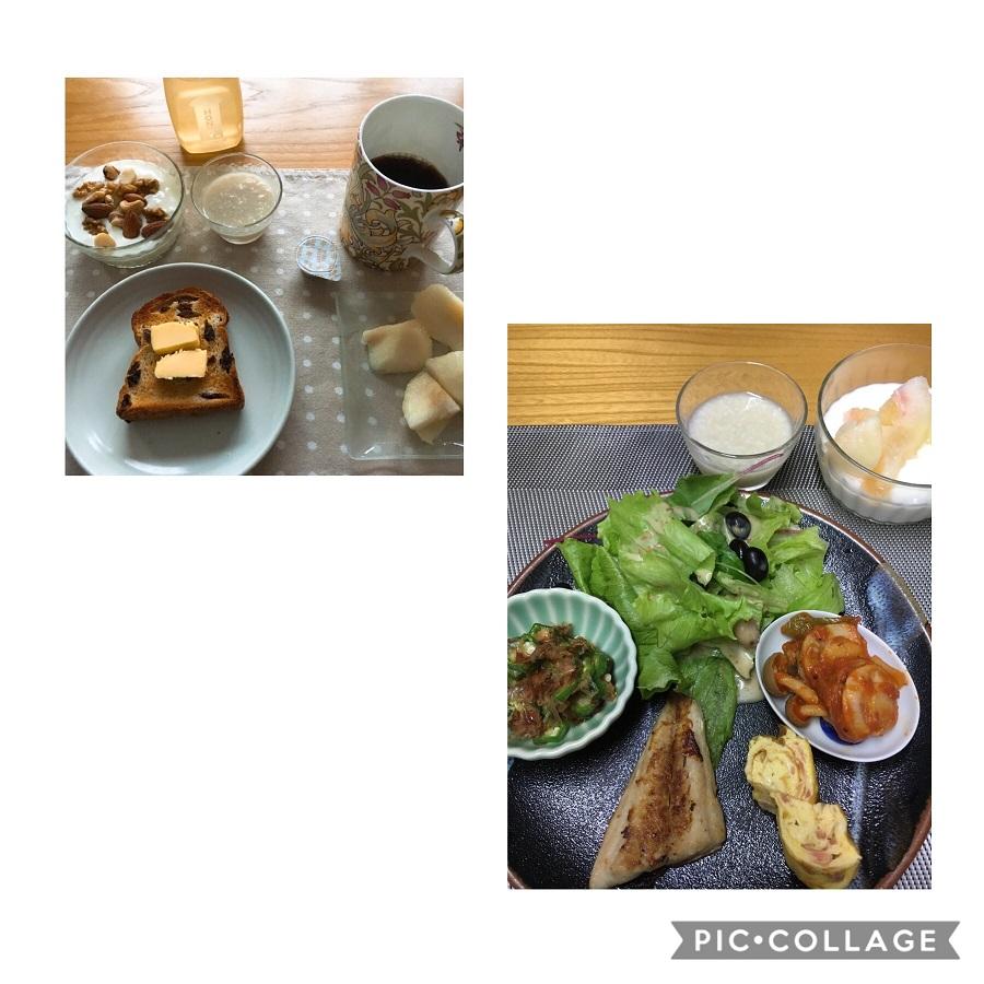 f:id:shibataku3:20190829083307j:plain