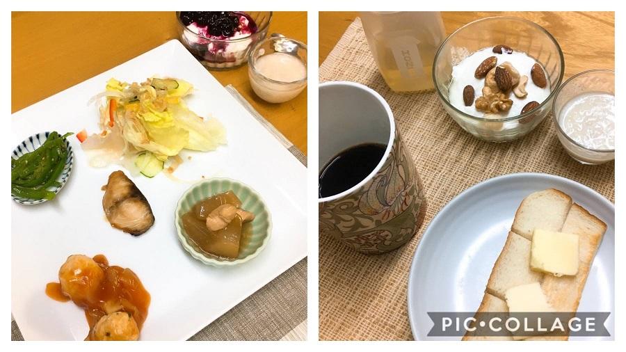 f:id:shibataku3:20191214083948j:plain