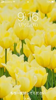 f:id:shibataku3:20200106091849p:plain