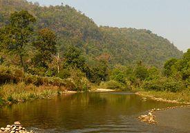 タイの世界遺産・トゥンヤイ-フワイ・カーケン野生生物保護区