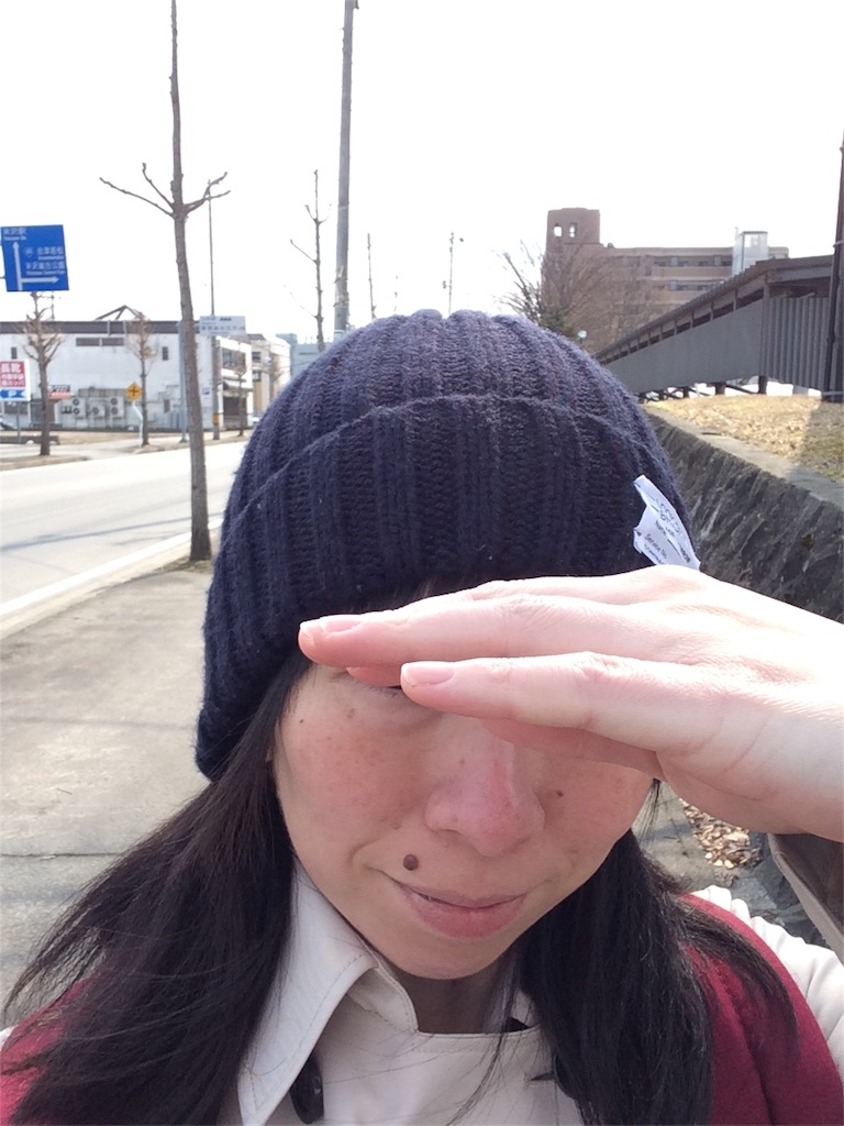 f:id:shiboritatekinoko:20170319150317j:image