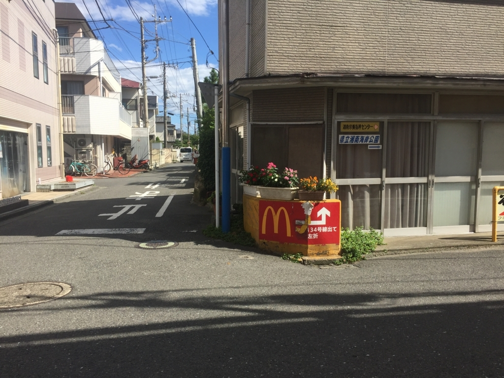 f:id:shibui_nekodama:20180817201447j:plain