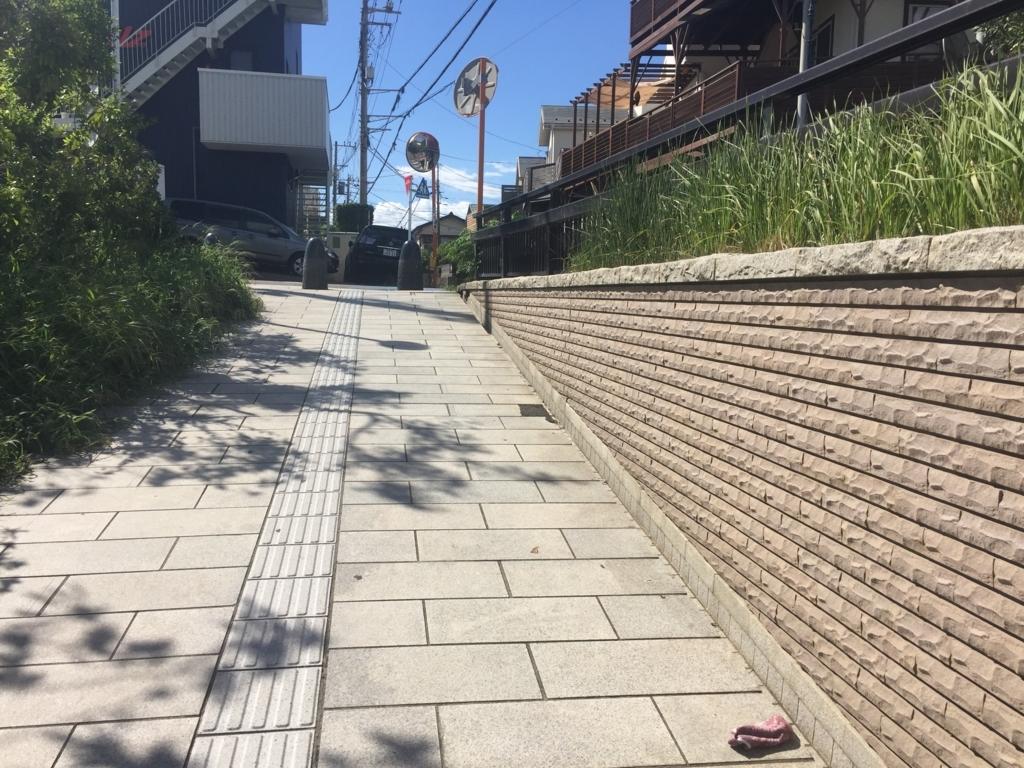 f:id:shibui_nekodama:20180817202359j:plain