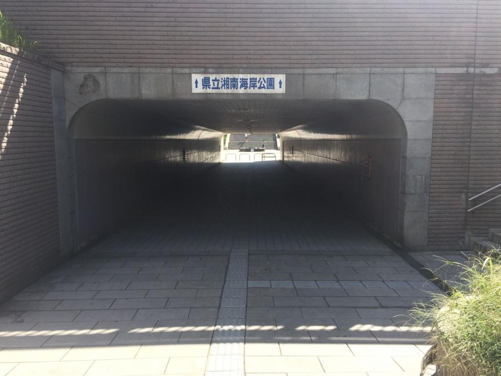 f:id:shibui_nekodama:20180817204740j:plain