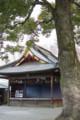 [埼玉県][久喜市]鷲宮神社 神楽殿
