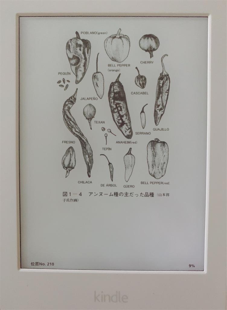 f:id:shibuyaumeboshi:20190217175628j:image