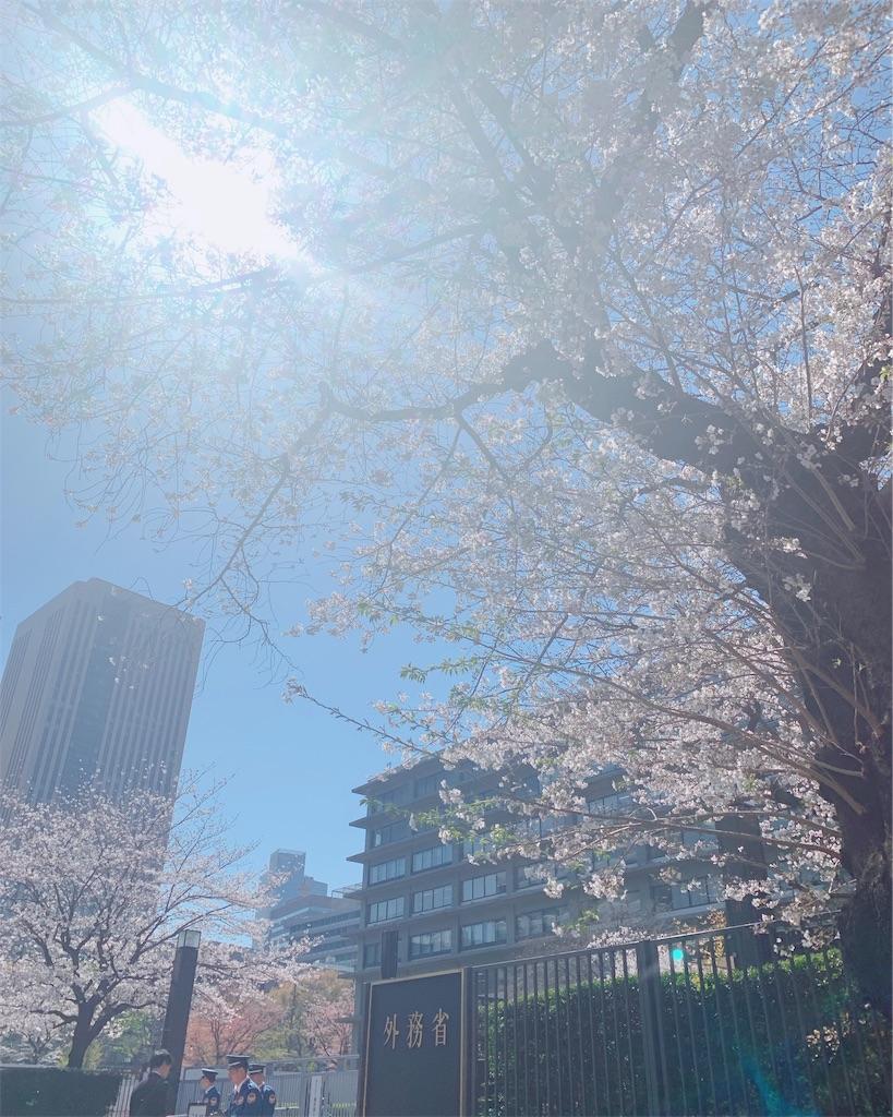 f:id:shibuyaumeboshi:20190404174807j:image