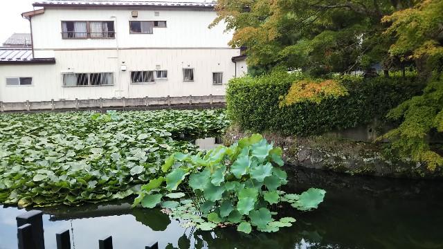 f:id:shichifukudo:20200903114742j:image