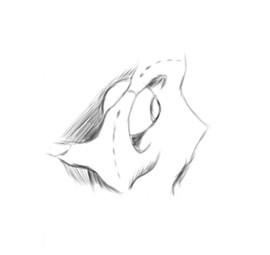 f:id:shidoju:20190614213011j:plain