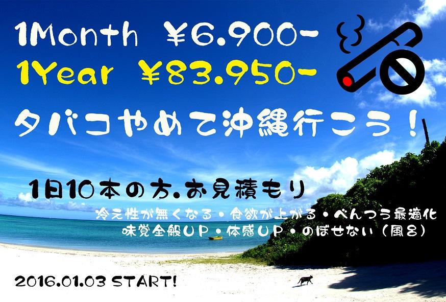 f:id:shidoromodoki:20160112003124j:plain