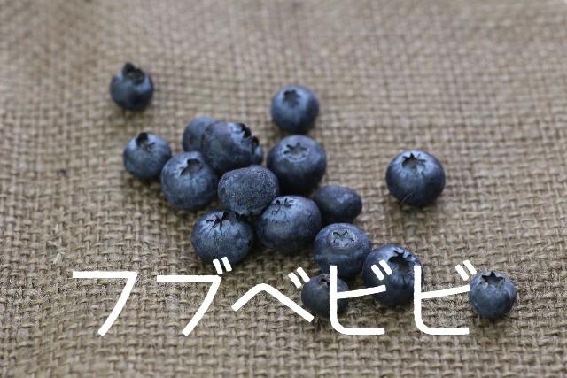 f:id:shidoromodoki:20160117123656j:plain