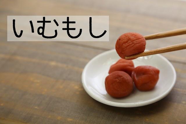 f:id:shidoromodoki:20160118144922j:plain