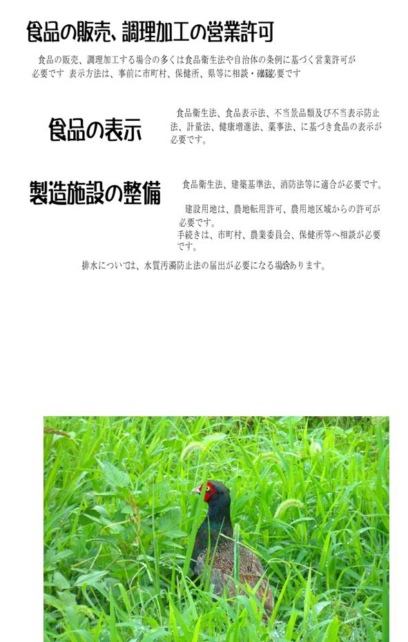 f:id:shidoyuuichi:20211012192127p:plain