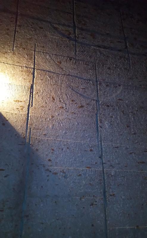 大谷石地下採掘場跡 壁2の画像