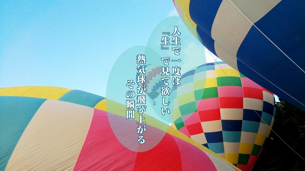 f:id:shigadekosodate:20180807155632j:plain