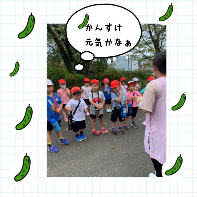 f:id:shigakkan-u-k:20200901142044j:image