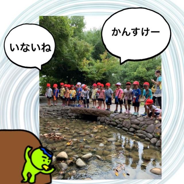 f:id:shigakkan-u-k:20200901142152j:image