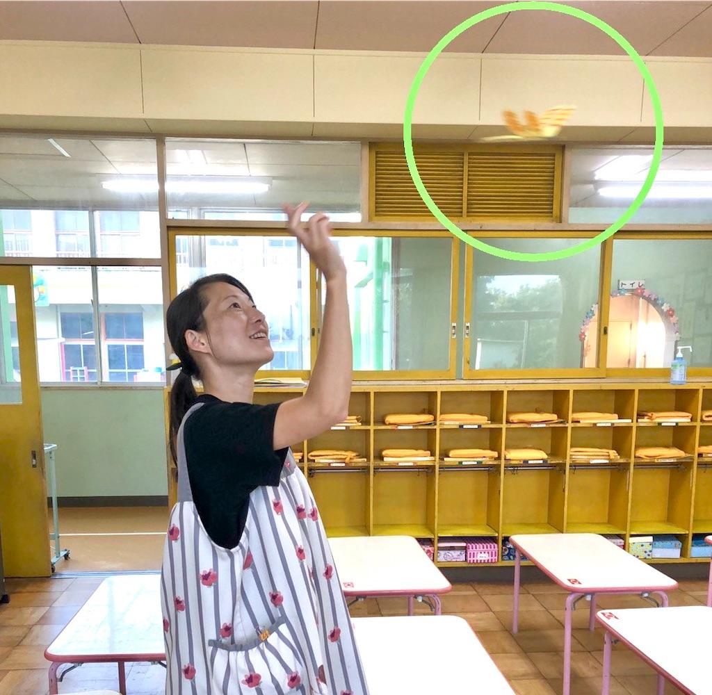 f:id:shigakkan-u-k:20201002193420j:image