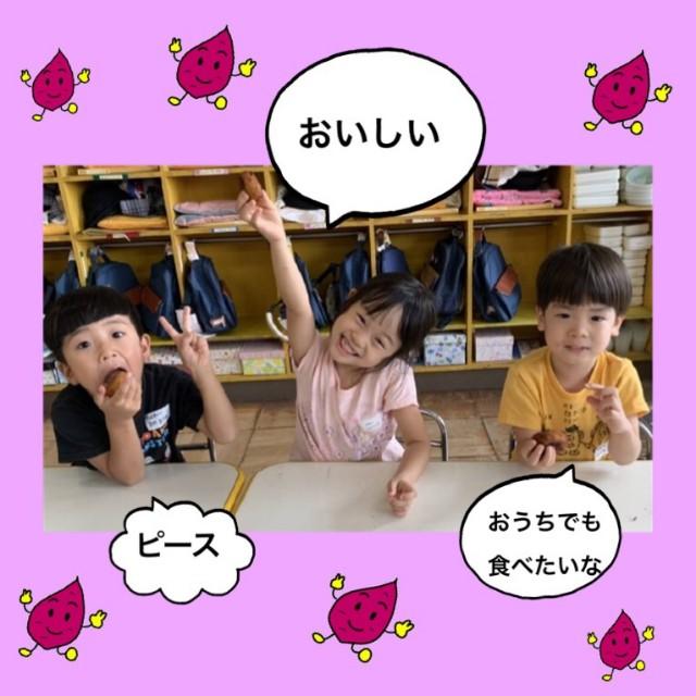 f:id:shigakkan-u-k:20201006141227j:image