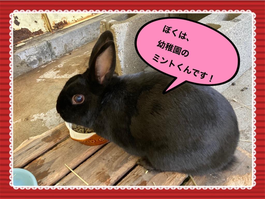 f:id:shigakkan-u-k:20210104222922j:image
