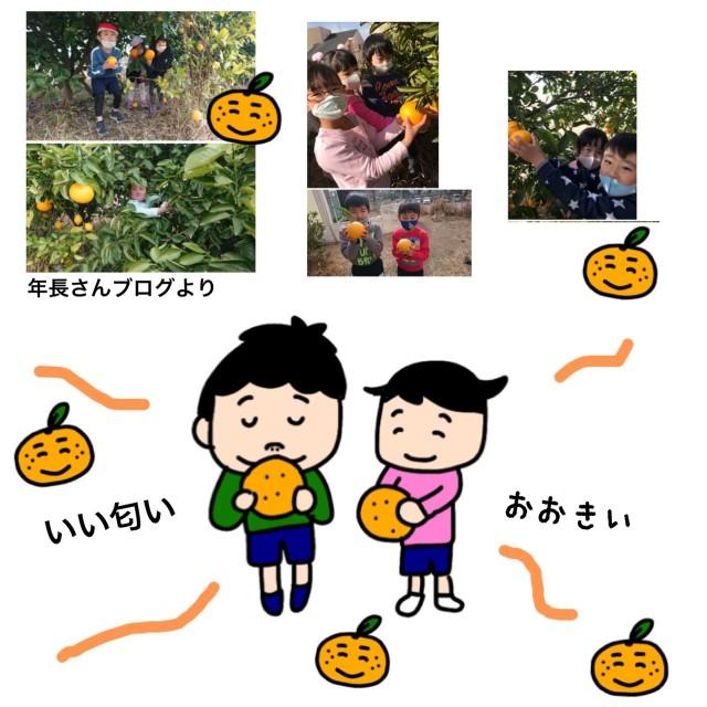 f:id:shigakkan-u-k:20210131165523j:image