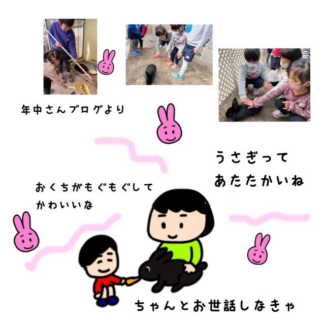 f:id:shigakkan-u-k:20210131170015j:image