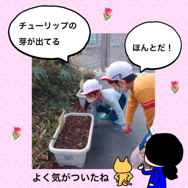 f:id:shigakkan-u-k:20210304164617j:image
