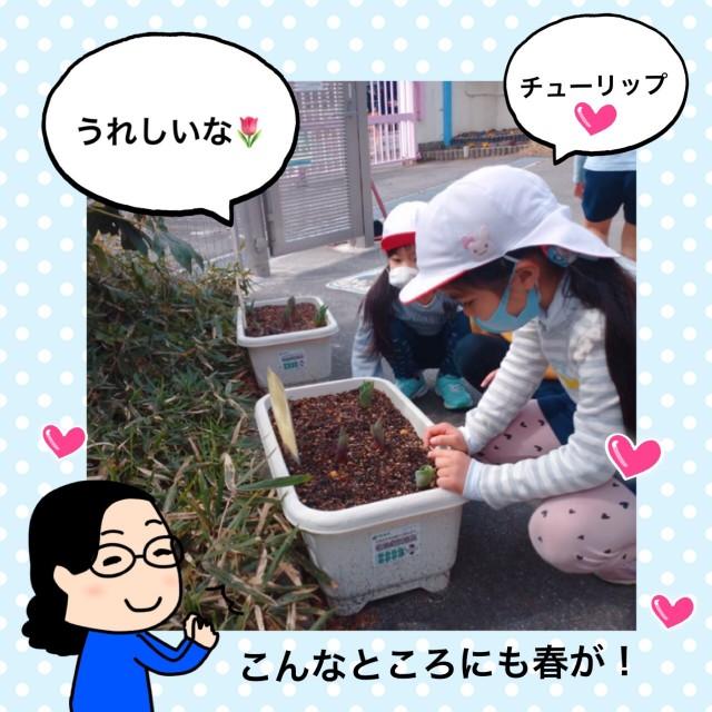 f:id:shigakkan-u-k:20210304164628j:image