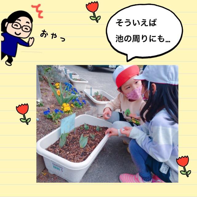 f:id:shigakkan-u-k:20210304164638j:image