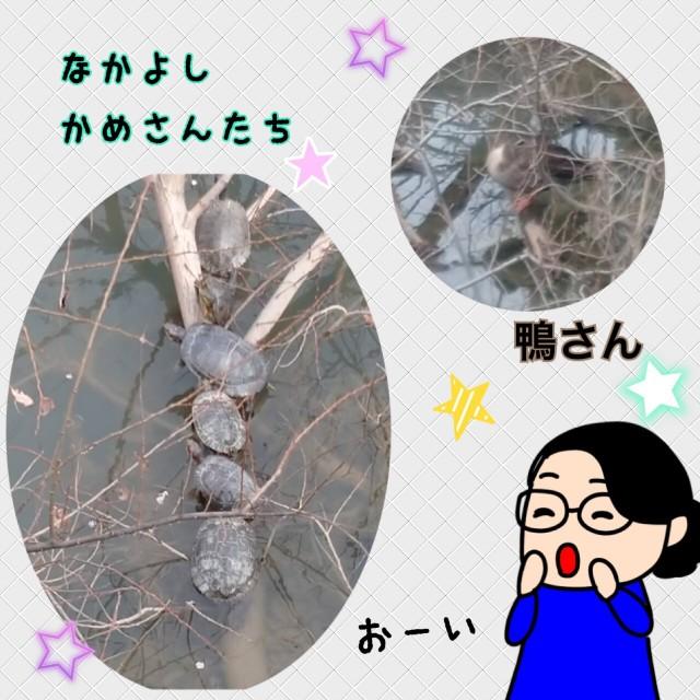 f:id:shigakkan-u-k:20210304164736j:image
