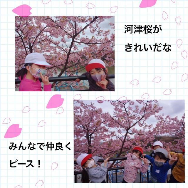 f:id:shigakkan-u-k:20210304164900j:image