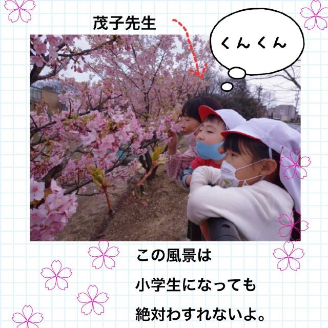 f:id:shigakkan-u-k:20210304165337j:image