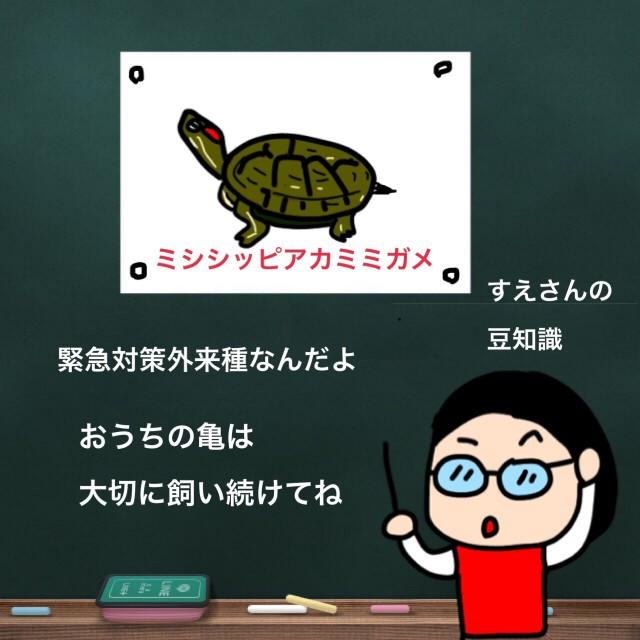f:id:shigakkan-u-k:20210305165830j:image