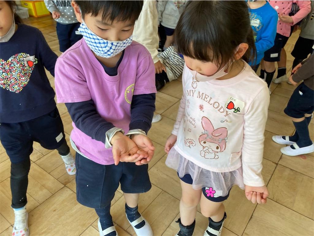 f:id:shigakkan-u-k:20210317215808j:image