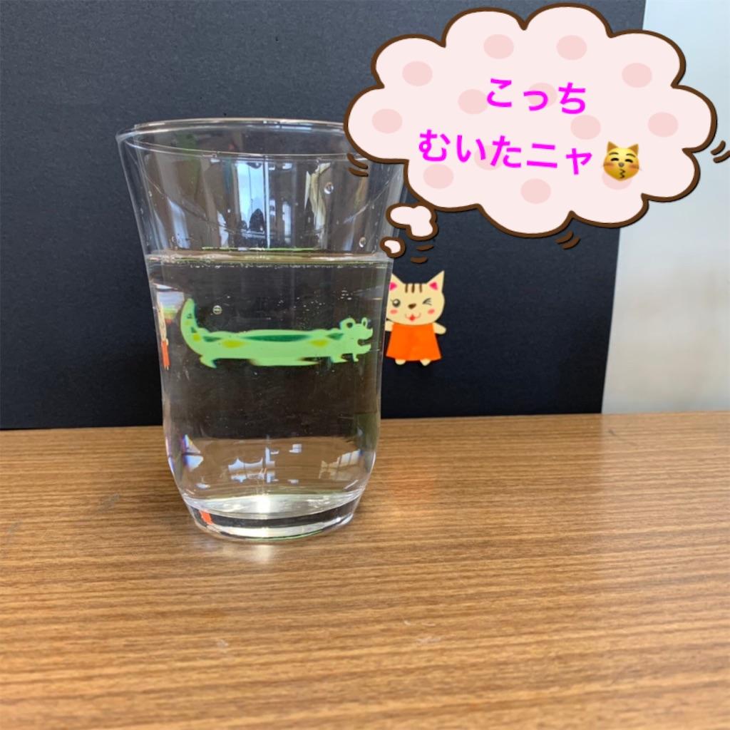 f:id:shigakkan-u-k:20210501222712j:image