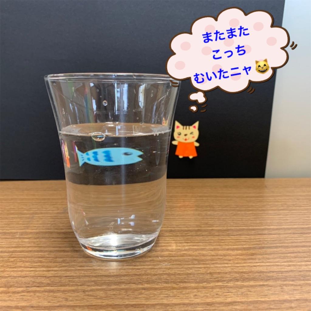 f:id:shigakkan-u-k:20210501223119j:image