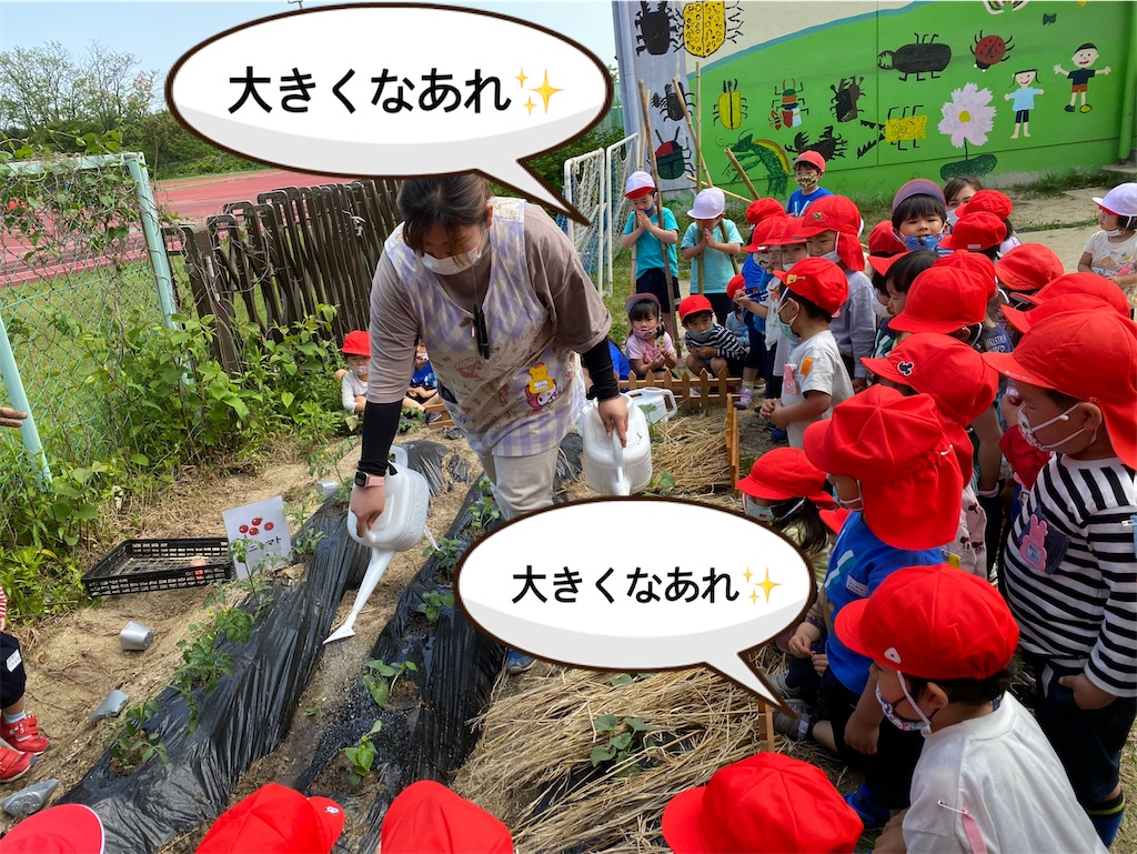 f:id:shigakkan-u-k:20210510184055j:image