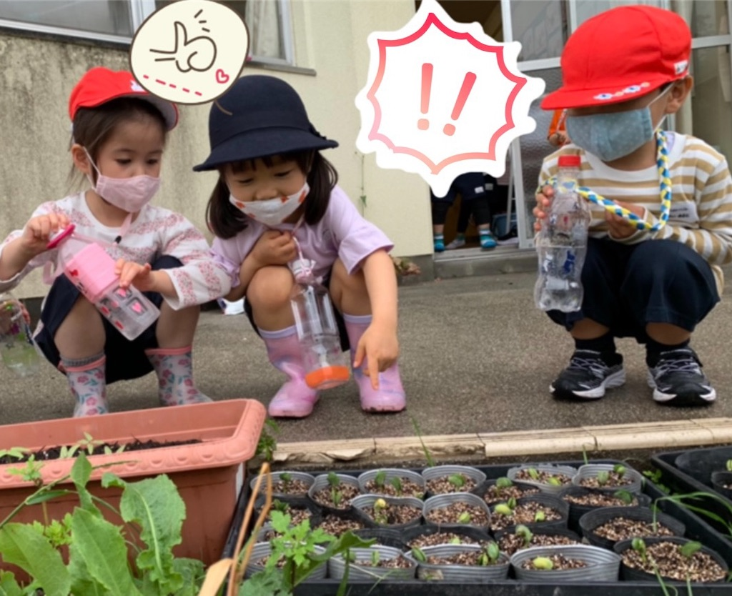 f:id:shigakkan-u-k:20210517213257j:image
