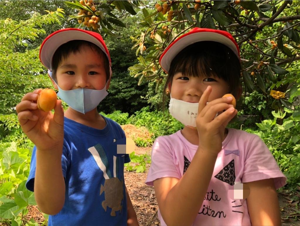 f:id:shigakkan-u-k:20210608165902j:image