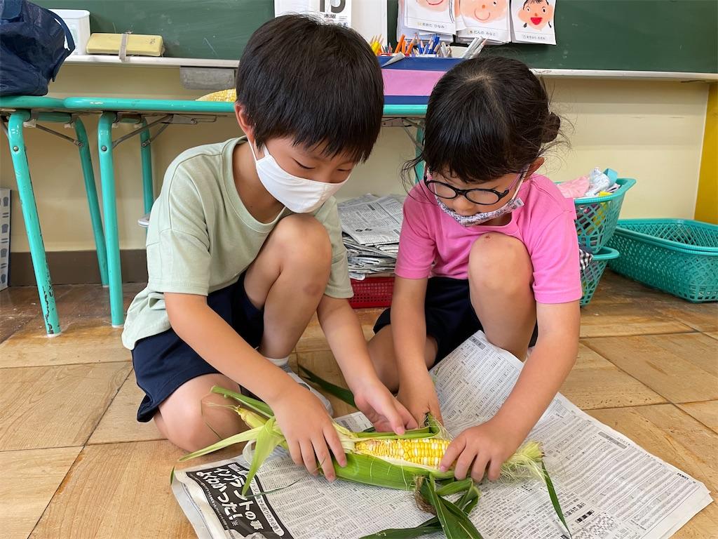 f:id:shigakkan-u-k:20210715202533j:image
