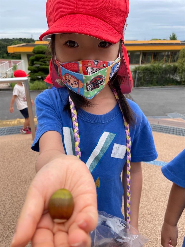 f:id:shigakkan-u-k:20210923085532j:image