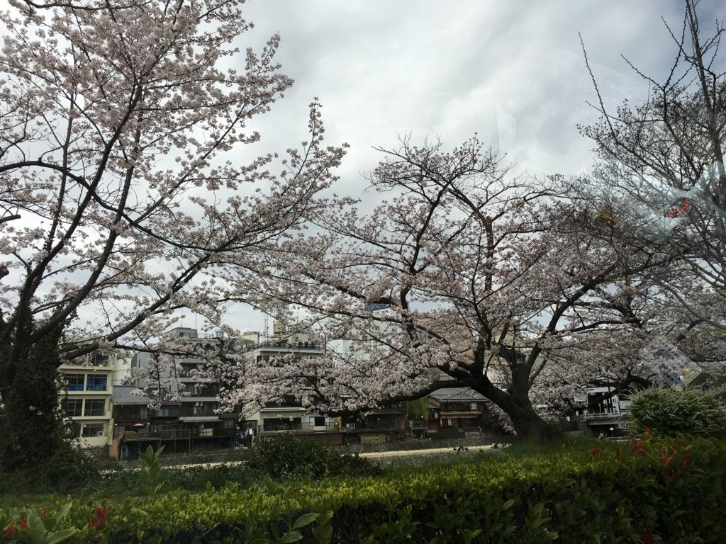 f:id:shigakushokuin:20180208222541j:plain